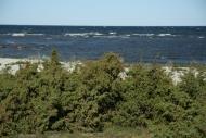 4EST – West Saaremaa – between Pidula and Veere