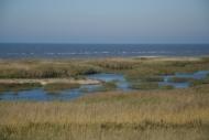 """7LAT – Natural reserve """"Randu meadows"""""""