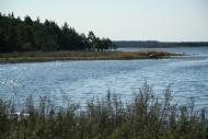 4EST – West Saaremaa – Vilsandi National Park